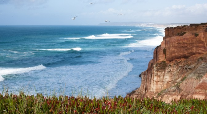 surfing in Peniche